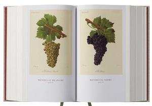 Вино - книги про вино - Топ-5 нових книг про вино за версією Forbes