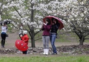Погода в Україні - потепління - Директор Гідрометцентру: Справжня весна прийде в Україну наступного тижня