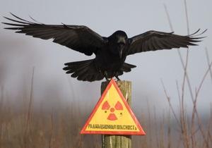Чорнобиль - Подальших обвалень на Чорнобильській АЕС не буде, - головний інженер станції