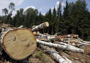 Янукович - Залісся - Для резиденції Януковича зрубають дерев майже на 2 млн грн - журналісти