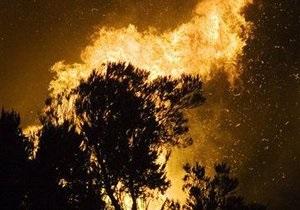 У Полтавській області згорів ліс площею 22 га