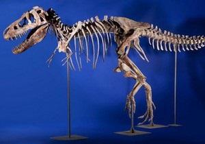Монголія хоче повернути проданий у США скелет динозавра