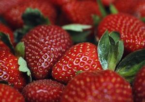 В Австрії на одній з ферм злодії за ніч вкрали тонну полуниці