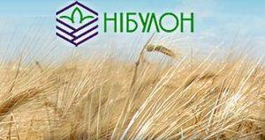 ЕБРР может предоставить украинскому зернотрейдеру $200 млн