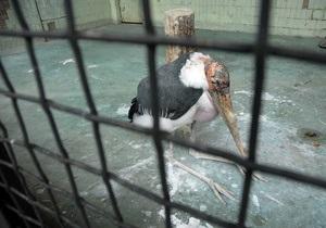 1 травня київська зоопарк відкриває сто третій весняно-літній сезон