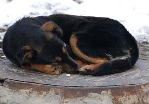 Росіянин крав в Івано-Франківську каналізаційні решітки, щоб не померти з голоду