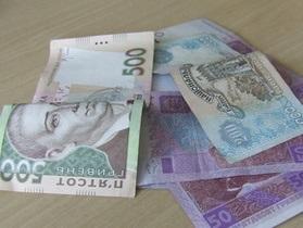 Депутат: Влада поряд з обіцянками про підвищення соцстандартів накопичує борги по зарплаті