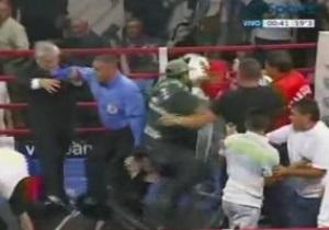 Бой за титул чемпиона мира по версии IBF закончился массовой дракой
