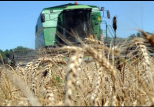 Експортне мито на зерно - вже закон