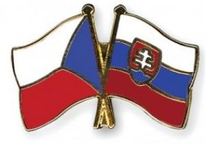 Платини дал добро на объединение футбольных Чемпионатов Чехии и Словакии