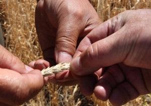 Українська служба Бі-бі-сі: США проти блокади зернового експорту