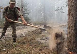 У Росії - загроза лісам, забрудненим радіацією
