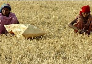 Індепендент : дорогі харчі можуть спричинити бунти