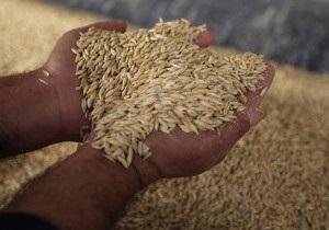 Експерт: В Україні очікують до 44 млн. тонн зерна