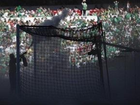 Во время футбольного матча в Мексике стадион атаковали пчелы
