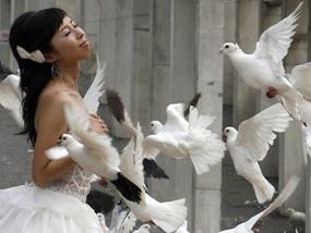 Олимпиада-2008: В день открытия состоится рекордное количество свадеб