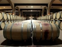 В Украине создан винодельческий холдинг
