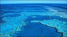 Існуванню Великого бар'єрного рифу загрожує глобальне потепління