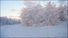 В Україні збережеться відносно тепла і волога погода