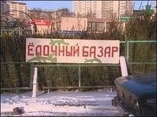 Українська міліція поклопочеться про ялинки
