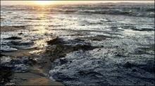 Нафтова пляма площею 116 км²  перебуває біля берегів Криму