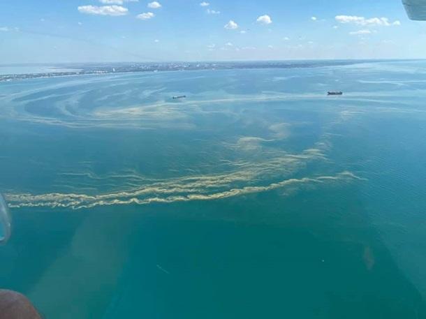 Появилось видео позеленевшего Черного моря