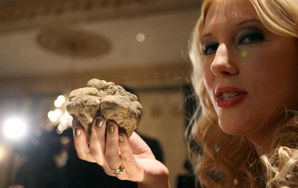 Трюфель - трюфели - стоимость - рецепт - Драгоценный гриб. Почему трюфели такие дорогие