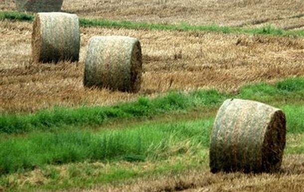 У австрийского фермера украли траву