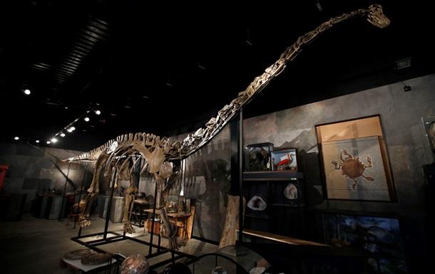 Американские ученые реконструировали мозг динозавров