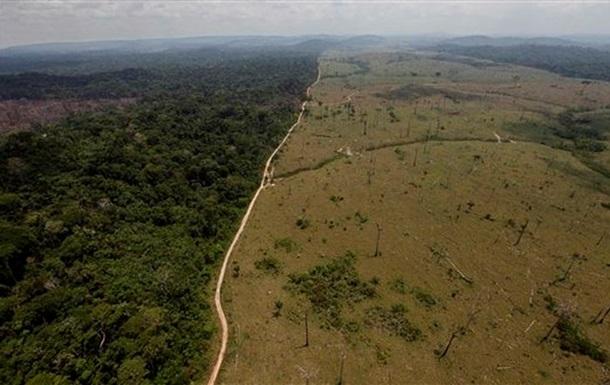 Леса Амазонки уничтожают все быстрее