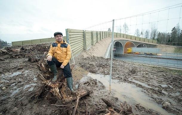 В Эстонии через оживленное шоссе построили мост для диких животных