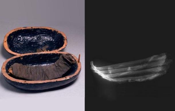 Говяжьи ребрышки для Аменхотепа: в гробнице фараона нашли мумифицированное мясо