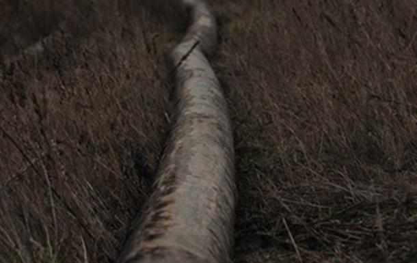 В селі на Київщині влада прикриває дерибан єдиного не розпайованого колгоспу