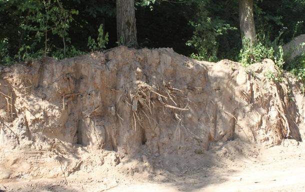 Знову знищують Голосіївський парк