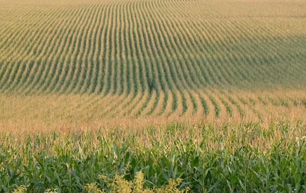 Сколько «зеленых» принесут Украине ее поля с черноземами?