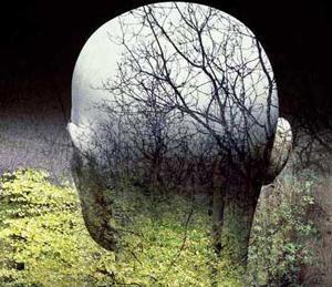 Украинцы не заметили экологического коллапса