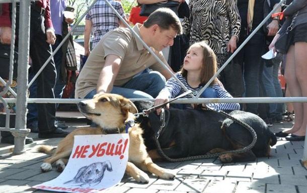 Зупинити вбивства безпритульних тварин!