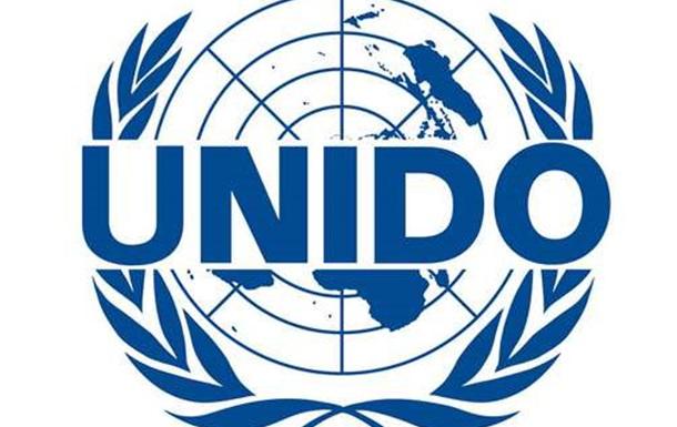 О мифах вокруг  стандартов бизнес планирования  UNIDO