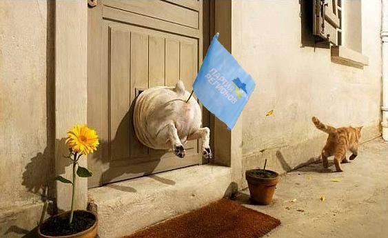 Під час приїзду Януковича до ООН, в Нью-Йорку  скажуть: «Давай досвидания!»