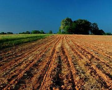 К вопросу о земельной реформе