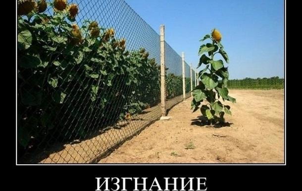 О тоталитаризме (Ханна Арендт)