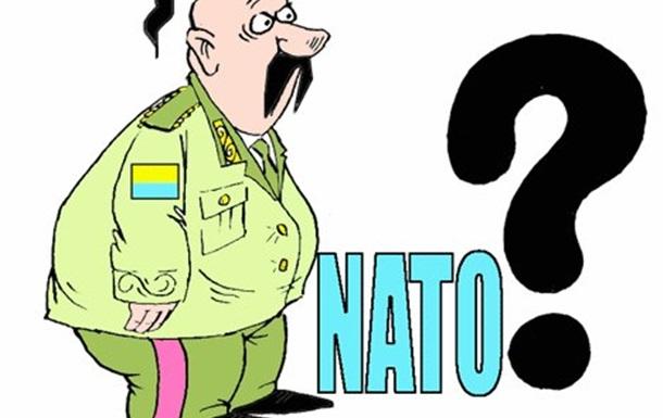 НАТО:  гусінь чи метелик?