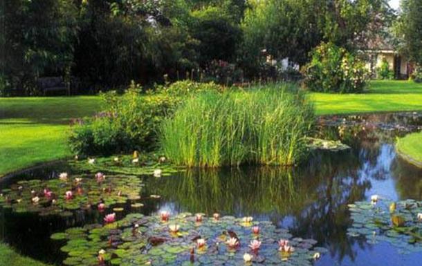 Фильтрация воды в декоративных прудах (часть 1)