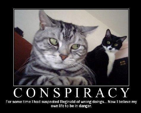 Про теории заговора: отсутствие логики у конспирологов