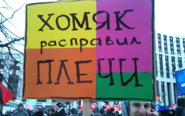 Расправит ли плечи украинский  хомяк ?