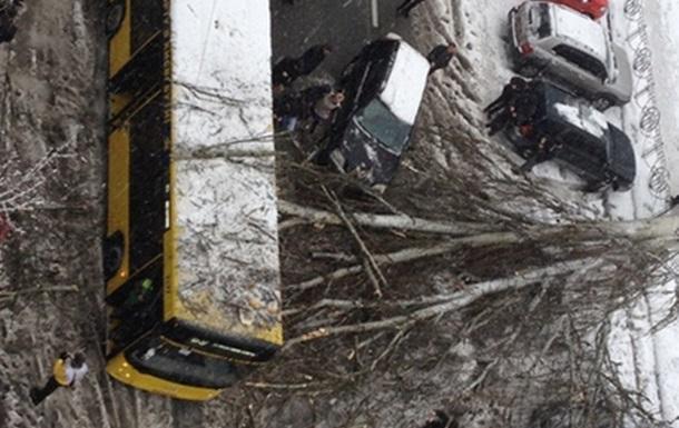 У Києві дерево впало на тролейбус