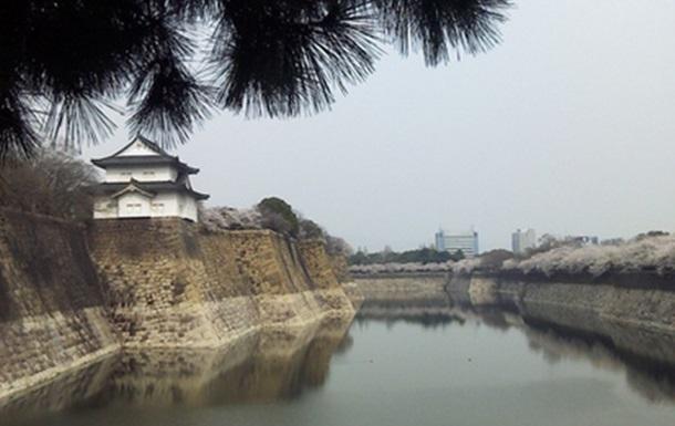 Ханами в Осака