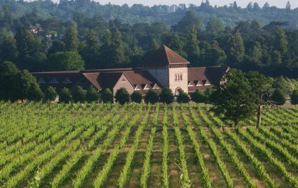 Климатические изменения могут сделать Британию одним из ведущих мировых производителей вина