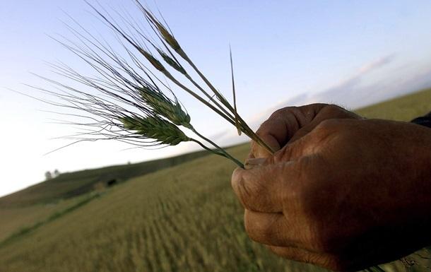 Кабмин хочет продлить невозмещение НДС при экспорте зерна до 2016 г