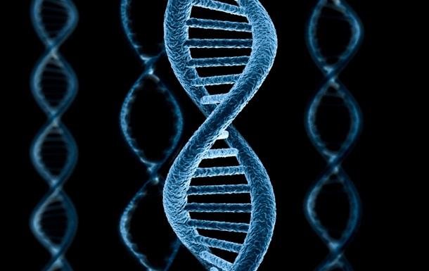 Стало возможным незаметно редактировать геном стволовых клеток